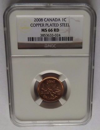 2008 Canada Ngc Ms66 Rd Copper Plated Steel Cent photo