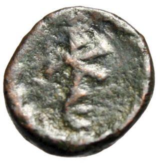 Rare 14mm Pentanummium Of Maurice Tiberius