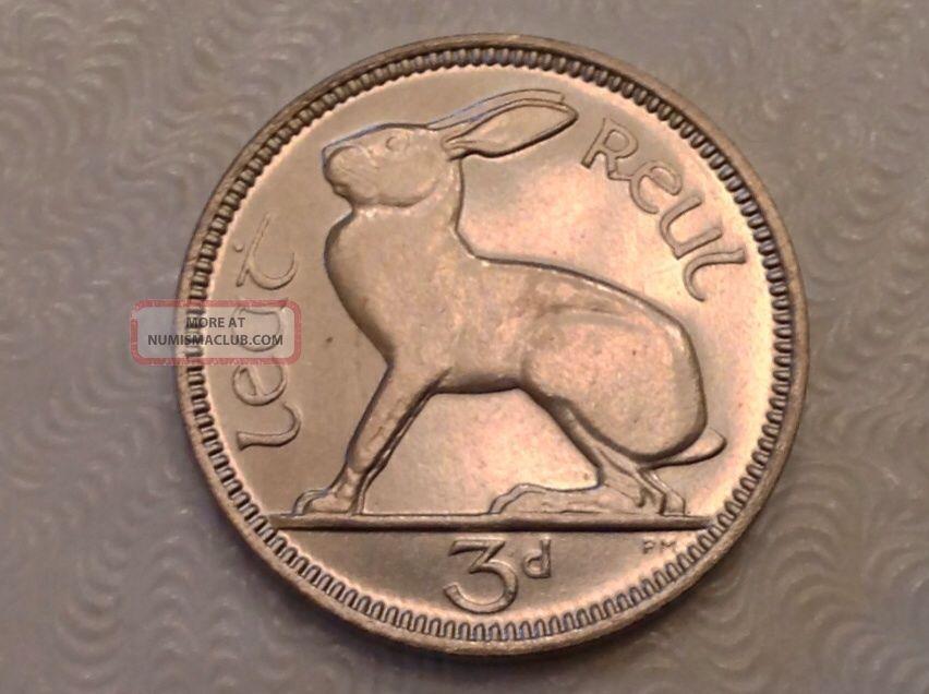 1928 Ireland 3 Pence Silver Choice Proof - Rabbit Europe photo