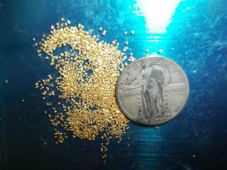 2.  2 Grams Alaska Natural Gold Nuggets,  Flake / Dust Capsule photo