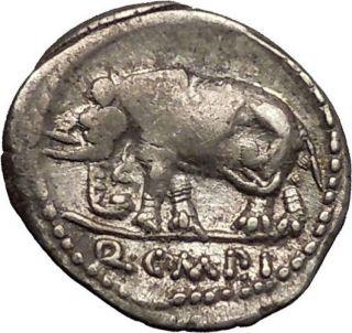 Roman Republic Sulla Imperator Metellus Pius Elephant Stork Silver Coin I52638 photo
