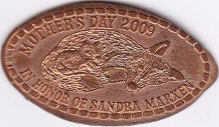 Mother ' S Day 2009 In Honor Of Sandra Marxen C/h Ec 322 photo
