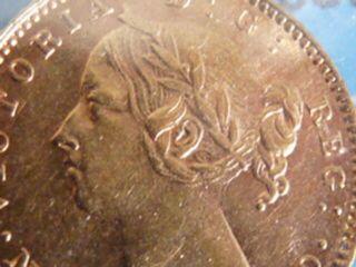 Lovely 1882h Newfoundland $2.  00 Gold C.  C.  C.  S.  Au - 50.  99 Start photo