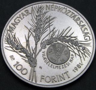 Hungary 100 Forint 1981 Proof - Fao - 587 猫 photo