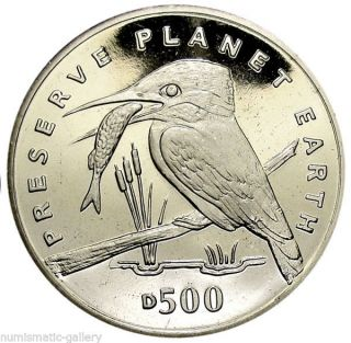 Bosnia - Herzegovina 500 Dinara 1994 Bu = Kingfisher = photo