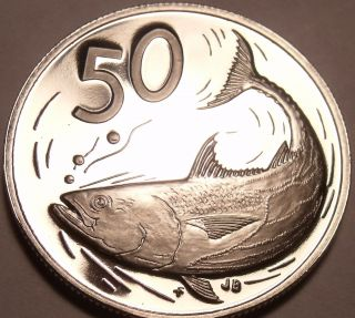 Large Cameo Proof Cook Islands 1972 50 Cents Bonito Fish 1st Year Ever photo