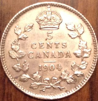 1904 Canada Silver 5 Cents Higher Grade Scarce Date Coin About Perfect photo