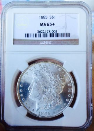 1885 P Morgan Ngc Ms65,  Frosty Blast White Beauty Wow Coin Pq,  Nr photo