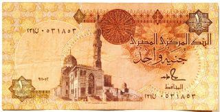 Egypt 1 Pound Banknote photo