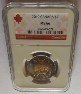 2010 Canada Ngc Ms66 Polar Bear $2 Red Canada Label 1 Coin Graded Higher photo
