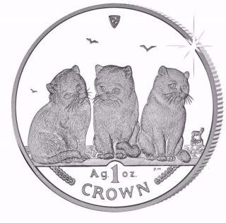 2006 Isle Of Man Exotic Shorthair Cat Coin 1 Oz Silver Proof & photo