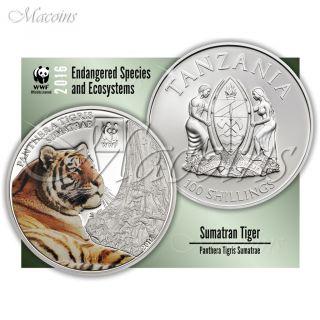 Sumatran Tiger Wwf 2016 Tanzania Cu - Silverplated Coloured Coin photo