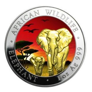 2015 1 Oz Silver Coin Somalia African Elephant Sunset Edition Color And 24k Gold photo
