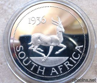 South Africa Edward Viii 1936 Crown Size Fantasy Coin,  Greater Kudu Antelope,  Bu photo