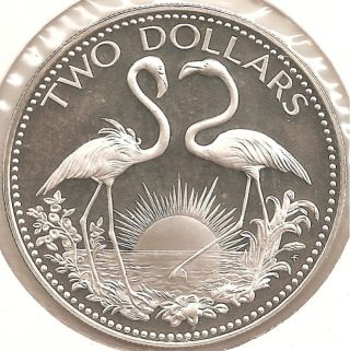 1975 Bahamas.  8863 Oz Silver $2 Proof.  Flamingos,  Birds. photo