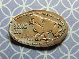 Elongated Penny - Ecz00497z - Bronx Zoo - Orangutan photo