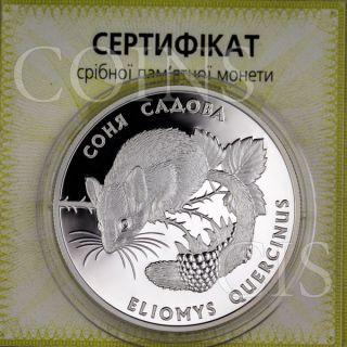 Ukraine 1999 10 Uah Garden Dormouse Eliomys Quercinus Flora & Fauna Proof Silver photo