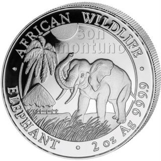 2017 Somalia Silver Elephant - 2 Oz Coin In Capsule - African Wildlife.  9999 Bu photo