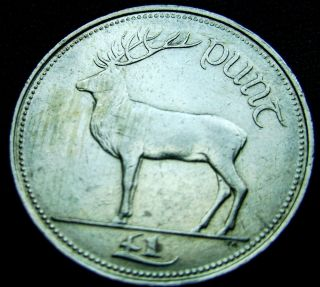 Ireland Republic.  1 Punt,  Pound,  1990 photo