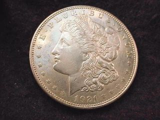 1921 Morgan Dollar Bu Dollar - - - 6001 photo