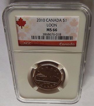 2010 Canada Ngc Ms66 Loon Loonie Dollar $1 Red Canada Label photo