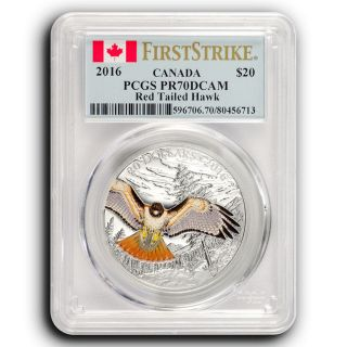 2016 Red Tailed Hawk Pcgs Pr70 First Strike Canada 1 Oz Proof Silver Coin photo