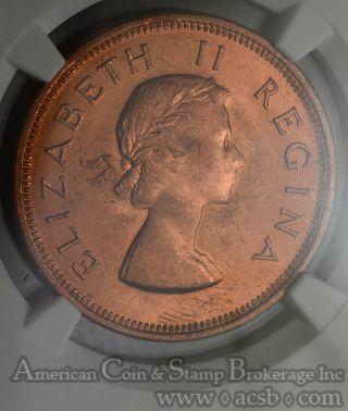 South Africa 1 Penny 1955 Bronze Km 46 Elizabeth Ii Finest Red Pop 1/0 photo