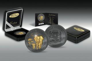 Somalia 2015 100 Shillings Somali Elephant Golden Enigma 1 Oz Silver Coin photo