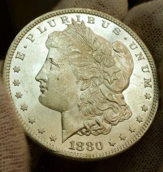1880 S Bu Ms,  Semi Pl - Frosty White Gorgeous Morgan Silver Dollar ☆☆☆ photo
