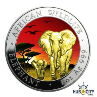 2015 1oz Somalia African Elephant Sunset 24k Gold Gild.  999 Fine Silver Coin photo