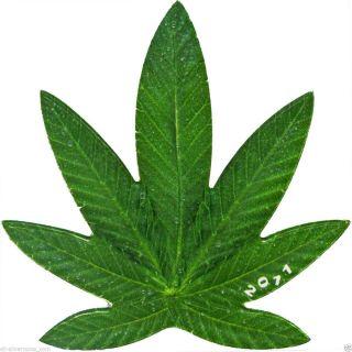 Cannabis Sativa Leaf Shape 100 Francs Benin 2011 Proof Coin photo