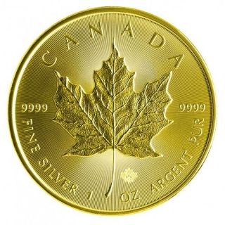 2014 1 Oz Silver Maple Leaf Full Gilded - 24k Gold photo
