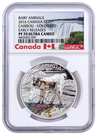 2016 Canada $20 1 Oz Colorized Silver Baby Animals Caribou Ngc Pf70 Er Sku43053 photo