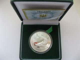 Ukraine 2012 Year 10 Hryvnia Coin Sterlet Freshwater Silver photo