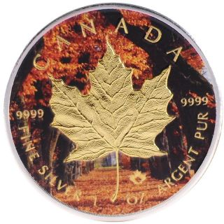2016 1oz Ounce Canadian Silver Maple Leaf Coin Gold Gilded Autumn Forest Theme photo