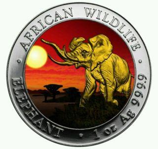 2016 1 Oz Fine Silver Elephant Somalia African Sunset 24k Gold Gilded Box & photo