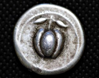 Greece Silver.  Milos.  V Century Bc.  The Apple.  Museum Res.  Coin photo