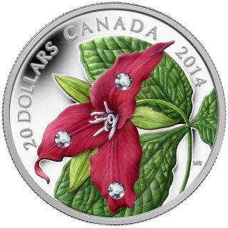 2014 Canada $20 Silver Coin - Red Trillium With Crystal Dew Drops photo
