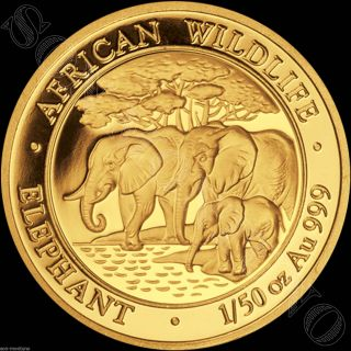 2013 Somalia Gold Elephant 1/50 Oz 24k Proof Coin In Capsule African Wildlife photo