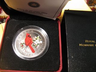 Canada 2008 Northern Cardinal Rare Bird Series 25 Cent Oversize Coloured Coin photo
