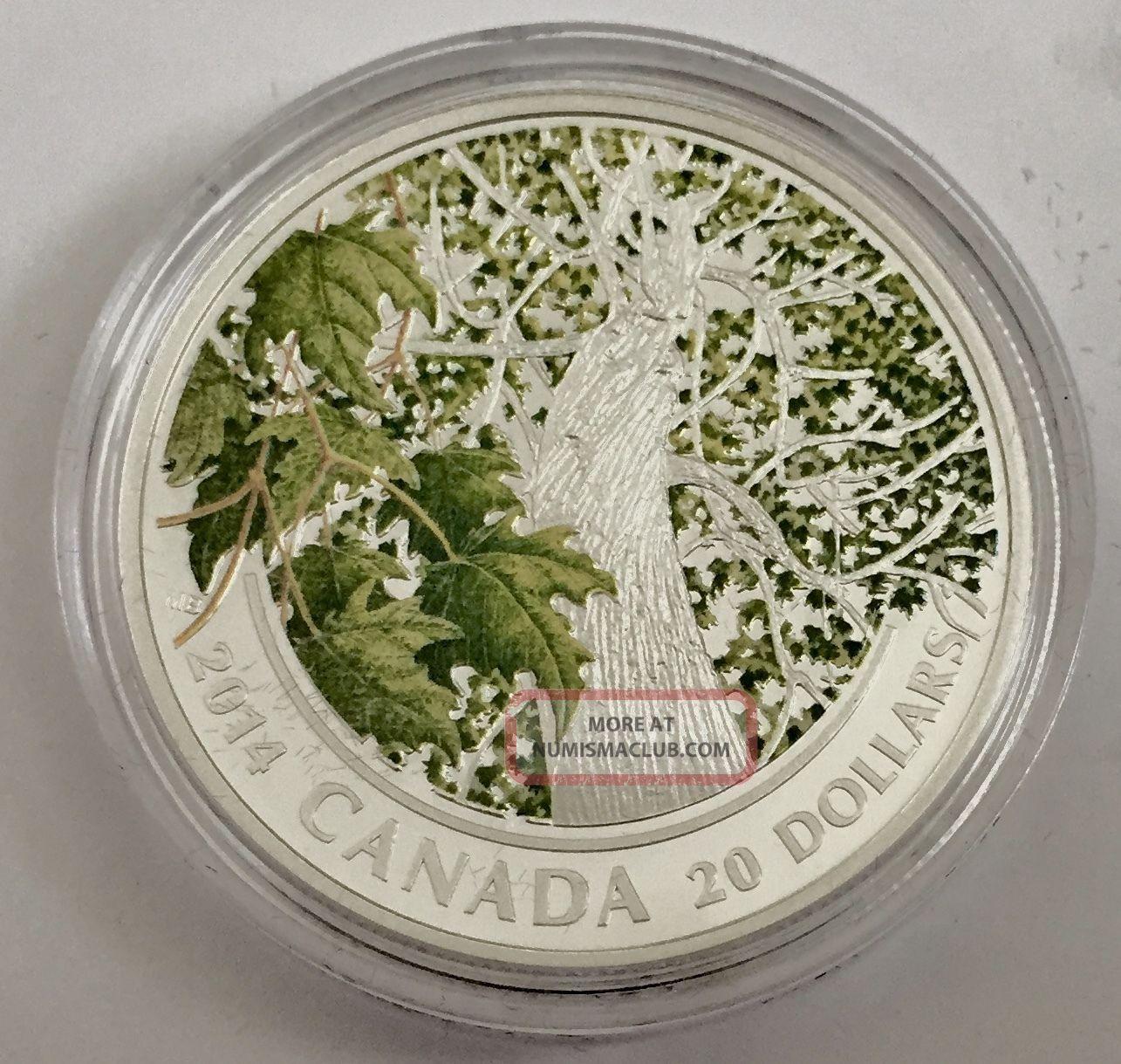 2014 $20 Fine Silver Canada Maple Canopy Spring Splendor,  Box And Coins: Canada photo