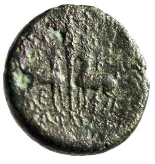 Historical Greek City Of Ephesos (ephesus) In Ionia
