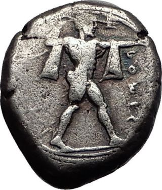 Poseidonia Paestum Lucania 445bc Ancient Silver Stater Greek Coin Bull I58582 photo