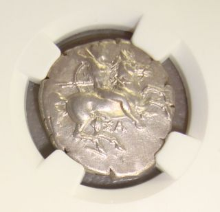 Ca.  325 Bc Calabria,  Taras Ancient Greek Silver Didrachm Ngc Choice Xf 4/5 4/5 photo