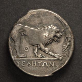 Velia,  Lucania 400 - 350 Bc,  Silver Didrachm,  Rare Flipped Die Overstrike photo