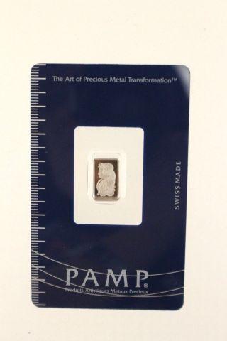 1 Gram Pamp Suisse Platinum Bar.  9995 Fine (in Assay) photo