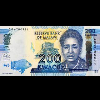Bank Of Malawi 200 Kwacha Unc 2013 P - 60 Rose Lomathinda Chibambo photo