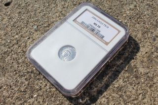 2006 Platinum Eagle P $10 Ms70 Ngc 1/10 Oz photo