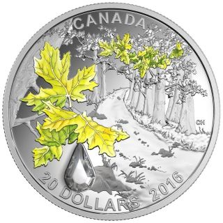 2016 Canada $20 Fine Silver Coin - Jewel Of The Rain - Bigleaf Maple photo