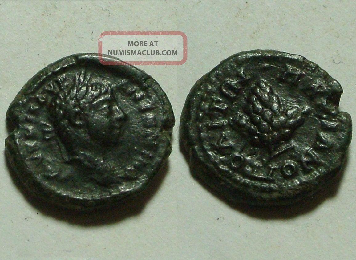 Rare Ancient Roman Coin Elagabalus Marcianopolis Grape Bunch Coins: Ancient photo